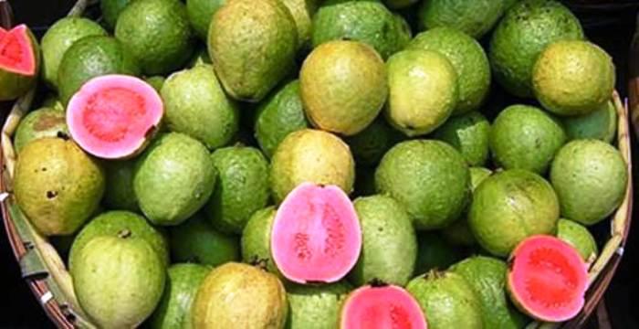 সীতাকুণ্ডের সুস্বাদু লাল পেয়ারা রপ্তানি হচ্ছে বিদেশে