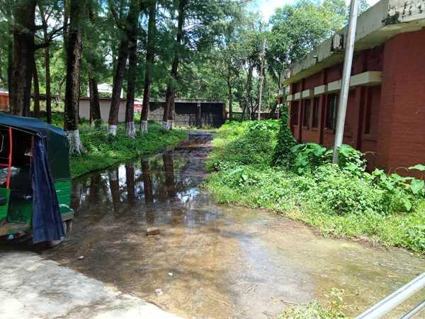 রাউজান স্বাস্থ্য কেন্দ্রে ডেঙ্গু রোগী নেই, সেবার মান নিয়ে অসন্তোষ